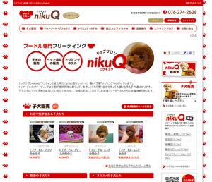 プードル、トイプードル専門店nikuQ