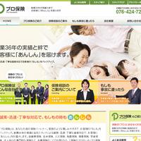 プロヴィデザイン ホームページ制作実績:プロ保険